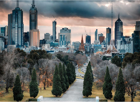 The State of the Australian Small Business Economy in Times of COVID-19